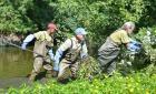 Anjou: Le département s'attaque à la propagation de la jussie
