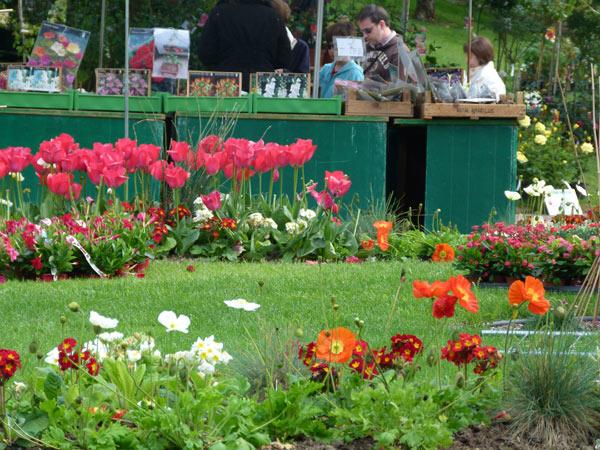 Xe marché aux fleurs à La La Baule