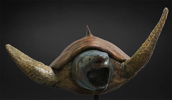 tortue-requin par Mauro Corda
