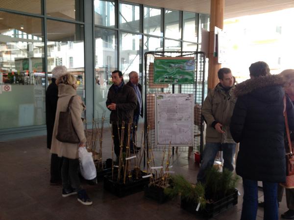 Les agents du patrimoine arboré vous attendent au marché central pour vous conseiller dans votre choix et sur la manière de planter votre arbre
