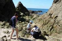 Petits et grands pour nettoyer la plage à l'appel du CMJ