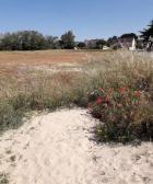 Pornichet: Le Département accompagne la commune pour préserver deux dunes