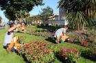Saint-Brevin-les-Pins: Une 4e fleur décernée à la ville par le jury national du fleurissement