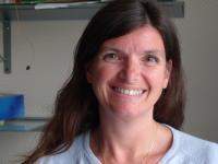 Sandra Vandeuren Médiateur