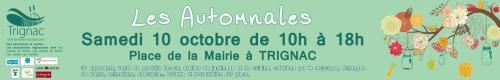 Automnales Trignac
