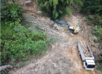 Déforestation pour faire de l'huile de palme