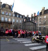 Manifestation des gilets roses à Vannes le 2-02-2019