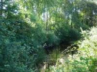 photo eau-et-rivieres.asso.fr