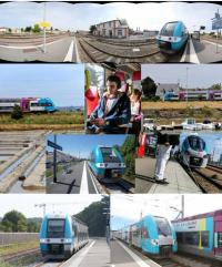 TER Pays de La Loire