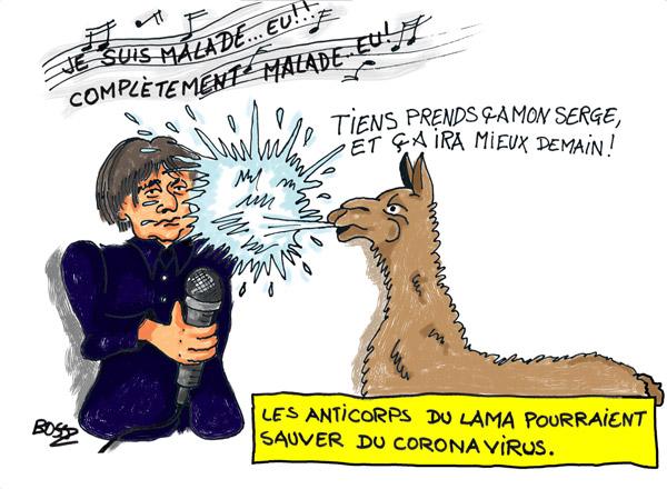Le lama© arme secrète contre le Coronavirus
