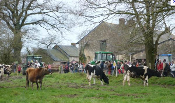 Les paysans de Notre-Dame-des-Landes sont expulsables